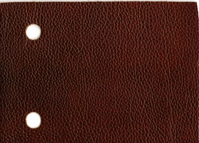 Leather Italia Saddle Leather Sample